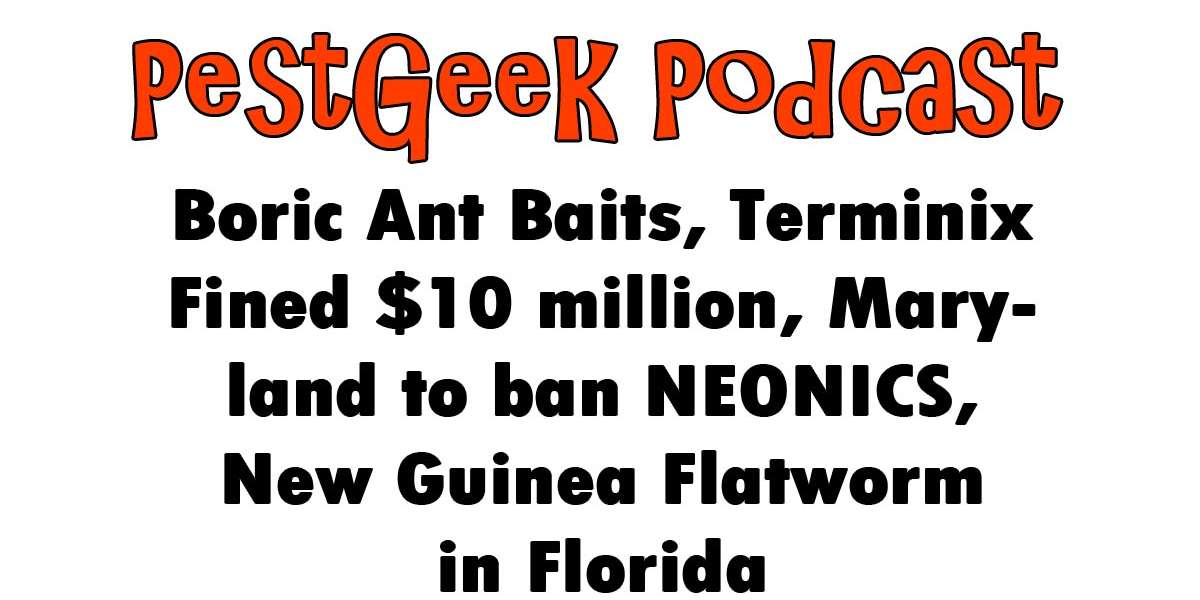 Boric Ant Bait, Terminix Fined, Maryland ban, New Guinea Flatworm