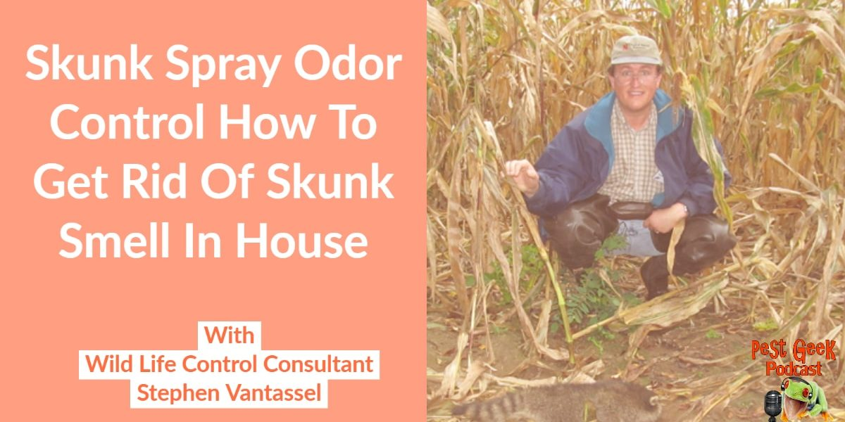 PGP-299 Skunk Spray Odor Control How To Get Rid Of Skunk Smell In House